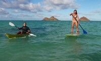 Full-Day Single Kayak or Standup-Paddleboard Rental for One or Two from Hawaiian WaterSports (Up to 51% Off)