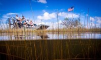 Everglades Tour for One, Two, or Four at Gator Park (Up to 28% Off)