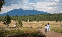 Admission to the Arboretum at Flagstaff for One, Two, or Four (Up to 50% Off)