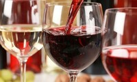 Full-Day Winery Bus Tour for One, Two, or Four with Meal from Texas Winos (Up to 73% Off)