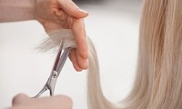 Haircuts, Colors, and Treatments at Studio IV Salon & Spa (Up to 54% Off). Five Options Available.