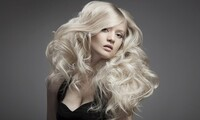 Haircut and Conditioning with Optional Full Color or Partial or Full Highlights at Salon DeCarlo (Up to 75% Off)