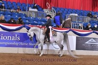 Up to 20% Off on Horse Back Riding - Recreational at Hall Show Horses