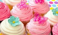$10.50 for Half a Dozen Cupcakes at The Cake Lady ($20 Value)