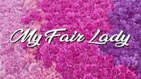 """My Fair Lady"": A Broadway Favorite"