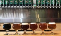 Beer Tasters and Logo Pint Glasses for One, Two, or Four at Kensington Brewing Company (Up to 49% Off)