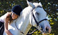 $49 for a Pony Princess Horseback-Riding Lesson and Grooming Package at Shenanigans Farm ($120 Value)
