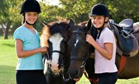 Two Private English 30-Minute Horseback-Riding Lessons at Haverhill Farms (Up to 46% Off)
