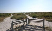 1-Night Stay for Up to Four at Tropical Winds Motel and Cottages in Sanibel, FL. Combine Multiple Nights.