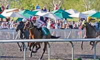 Emerald Downs: Horse-Racing Package with Program and Food and Beverage Voucher (Through September 23)