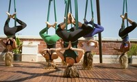 Aerial Birthday Party Packages for Up to Nine People from Yoga and Wellness Center (Up to 49% Off)